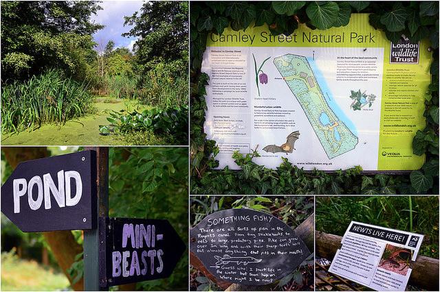 Giardini segreti a Londra
