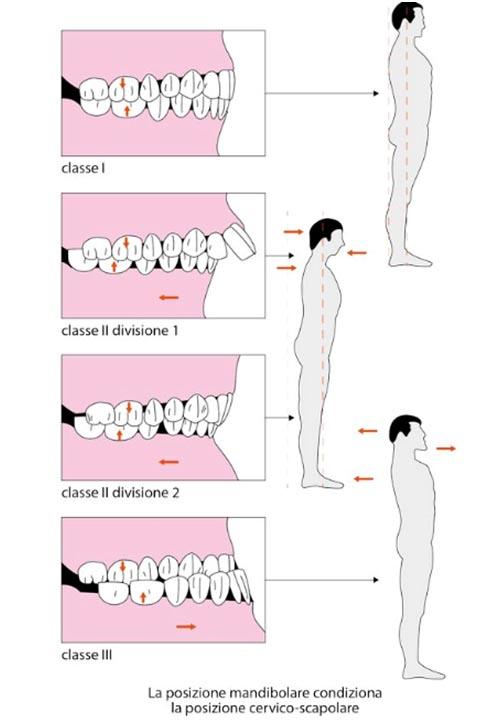 chirurgo maxillo-facciale
