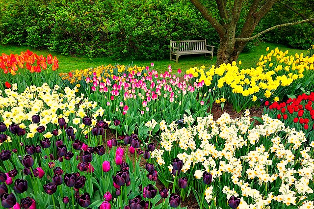 Giardini a Londra